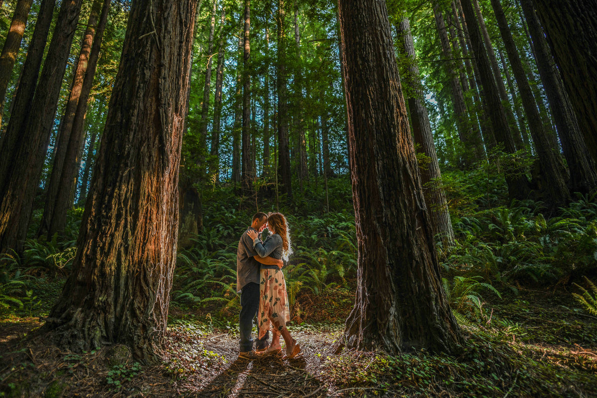 Redway-California-engagement-photographer-Parky's-Pics-Photography-Humboldt-County-redwoods-Avenue-of-the-Giants-Humboldt-Redwoods-State-Park-engagement-2.jpg