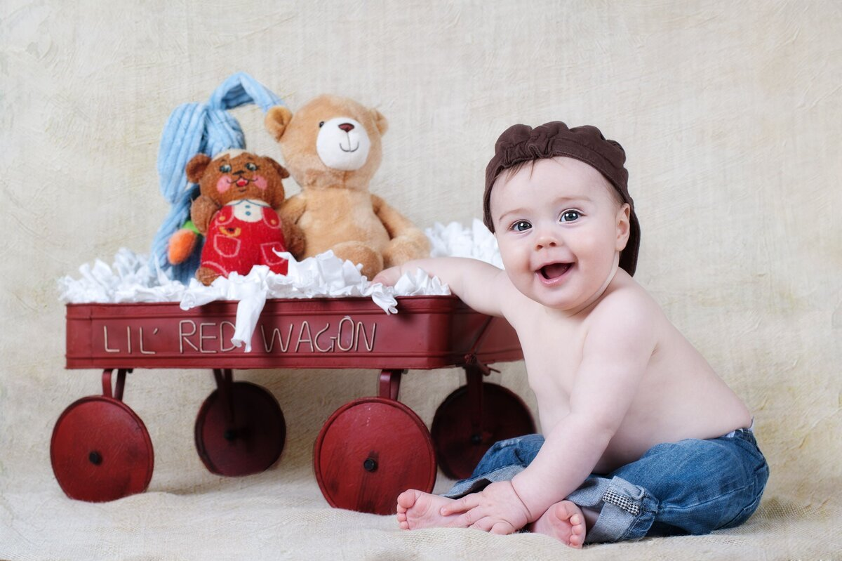Baby Photography Wagon