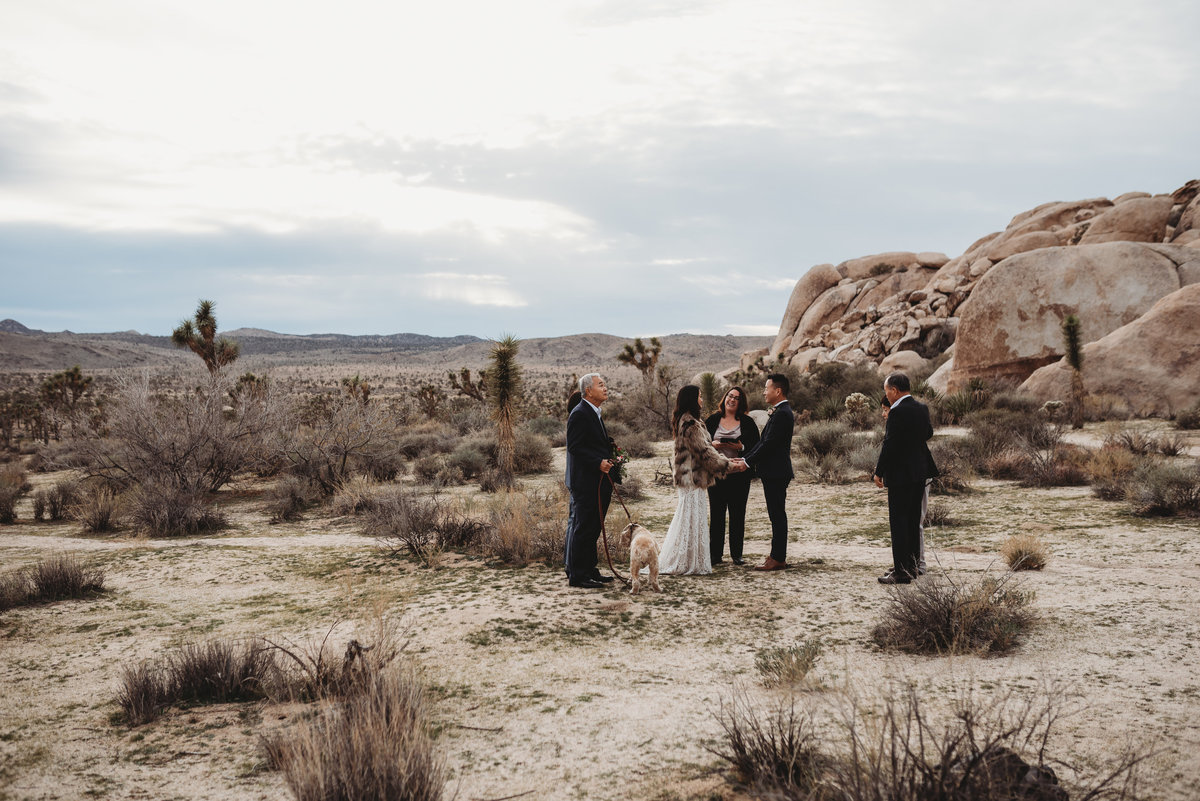 Epic Elopement-Joshua Tree-Janae Marie Photography