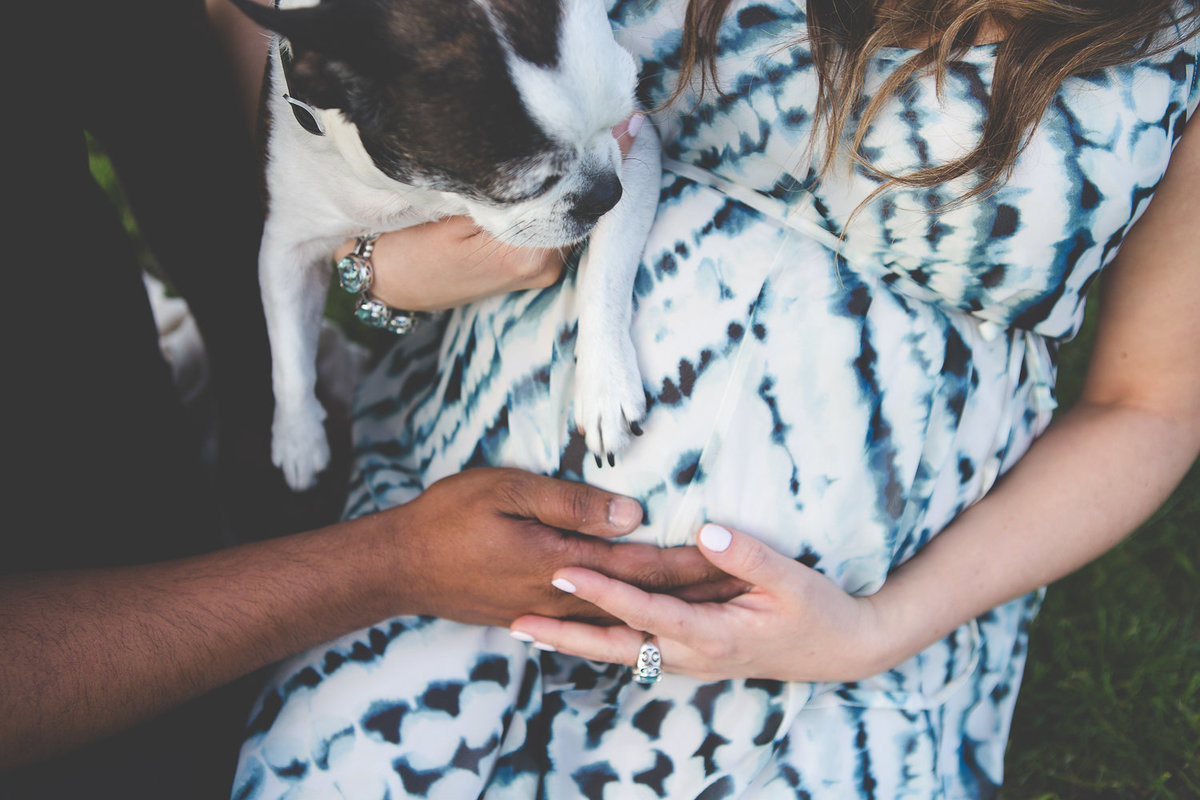 close up shot of hands on pregnant belly {Oakville Maternity Photographer}