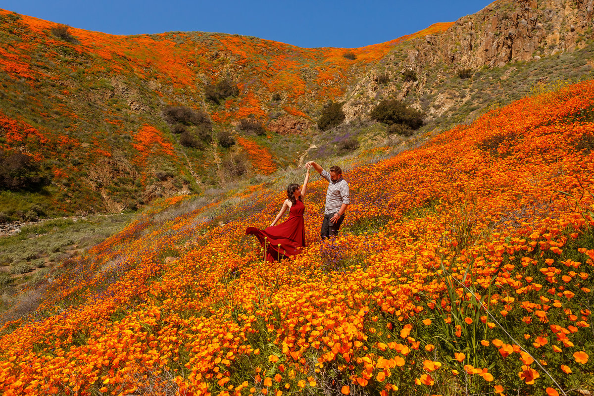 Engaged couple dancing in a field of flowers