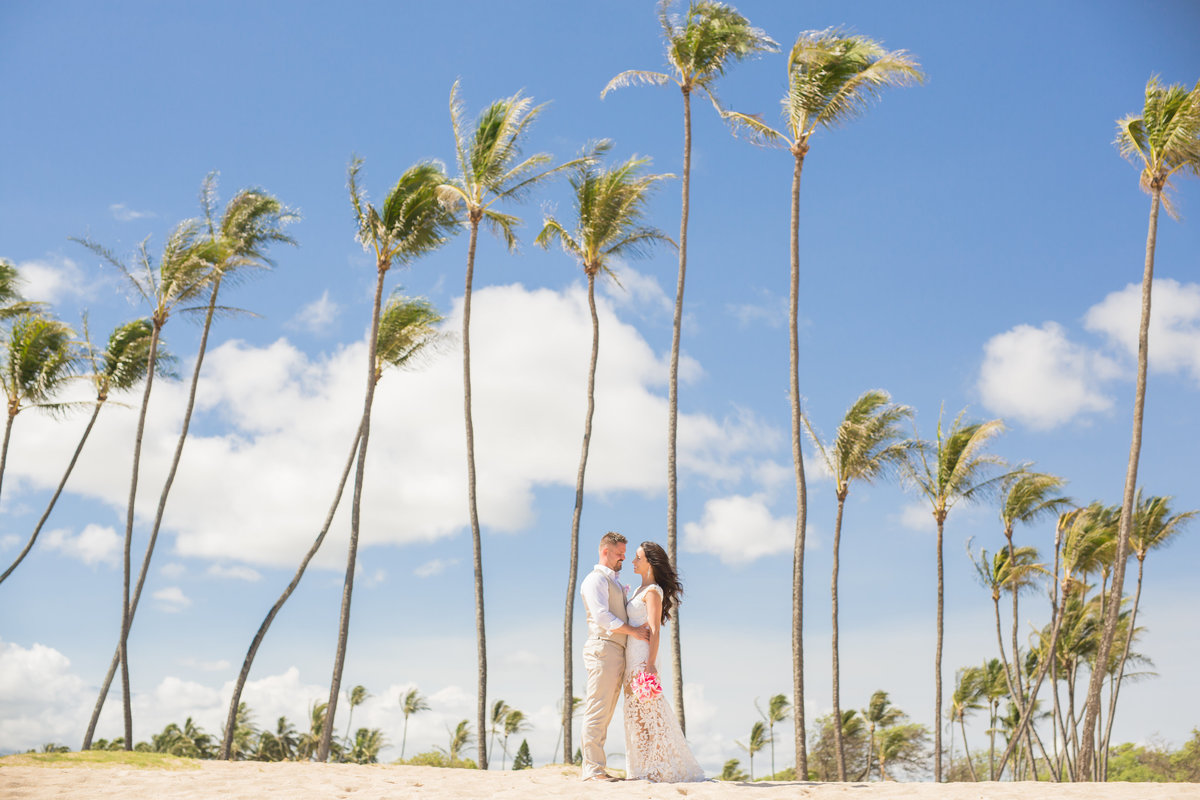 Professional Wedding Photographers Hawaii