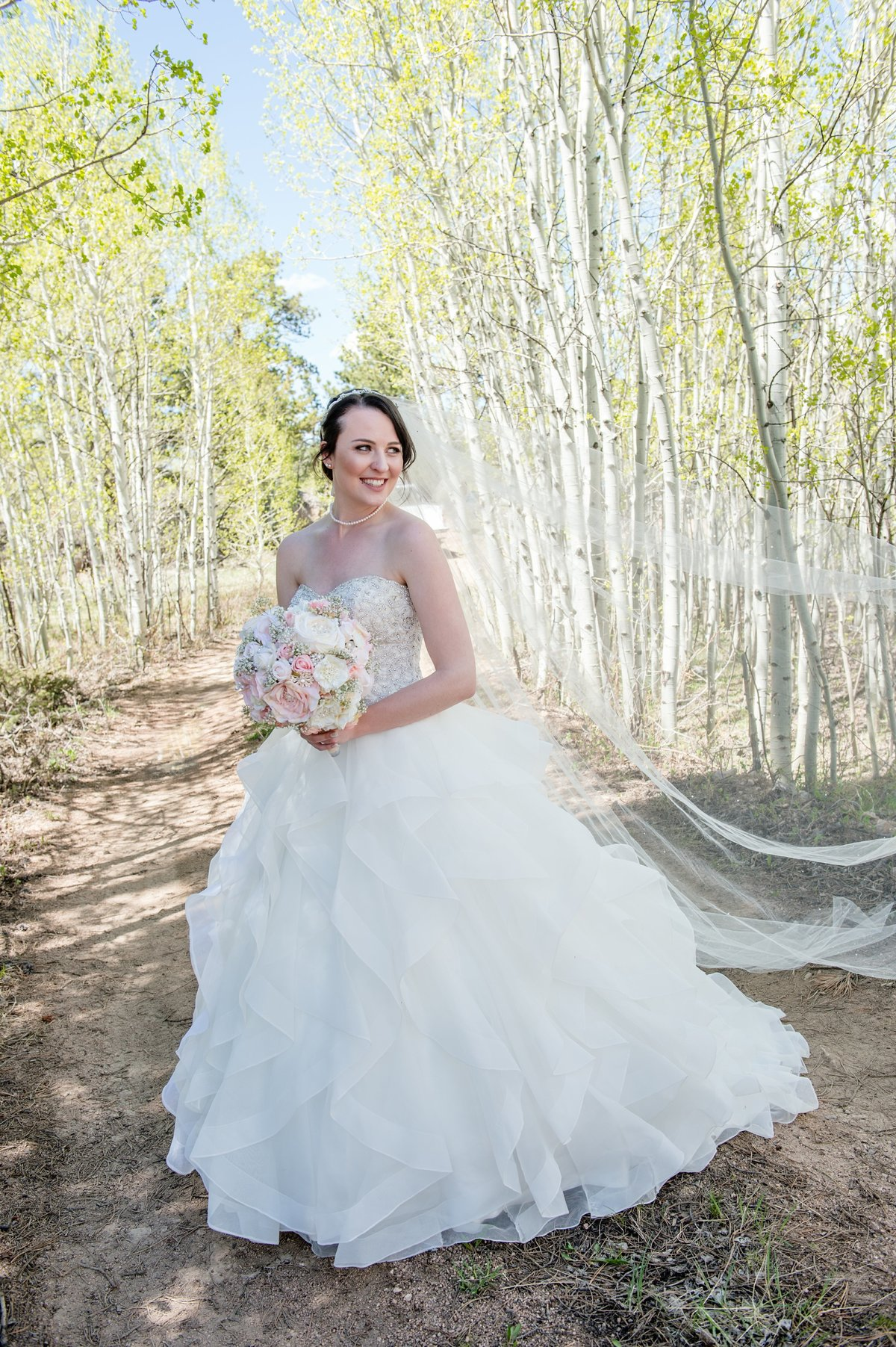Spring Wedding Beaver Meadows, Red Feather CO-258