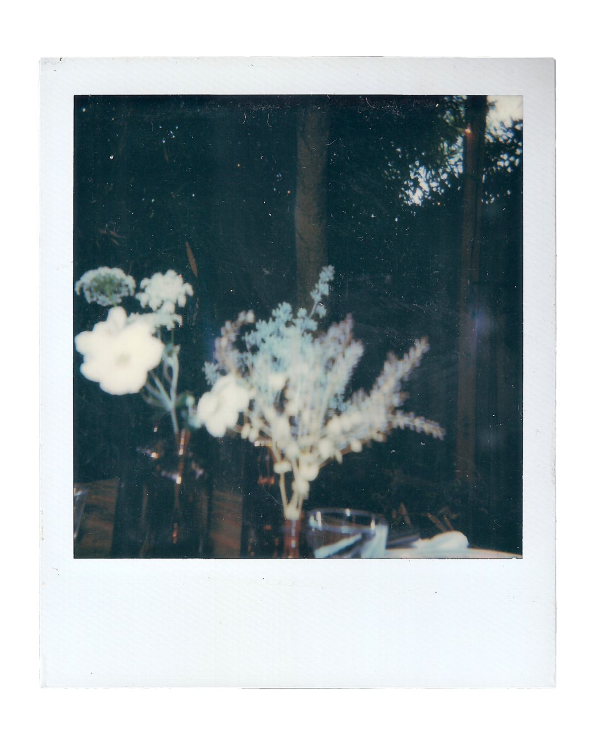 Nick + Kelly | Portland, OR Backyard Wedding | Polaroids00007