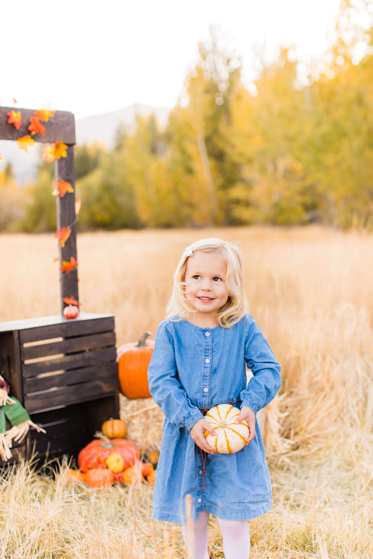 FallMiniSession2019 (7 of 39)