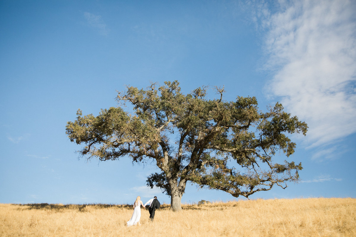 sunol_wedding_019