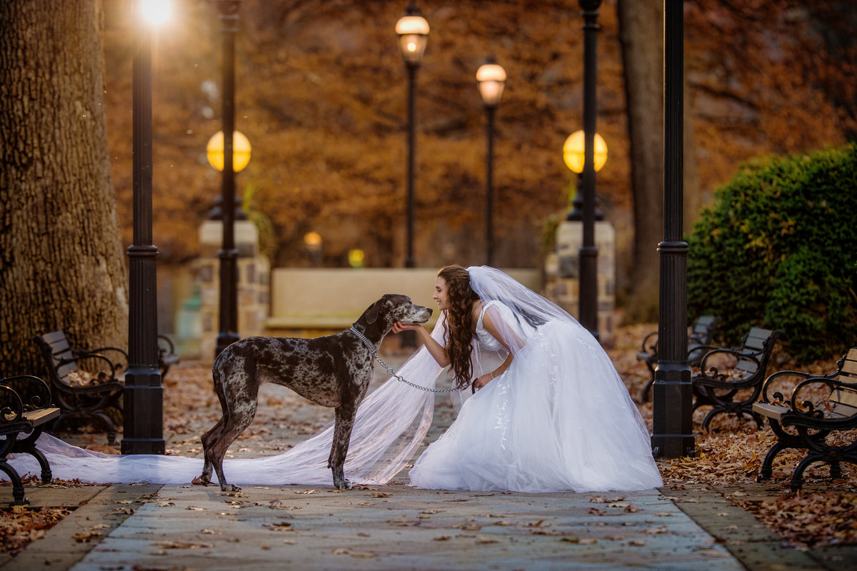 Bride at Golden Hour with Great Dane