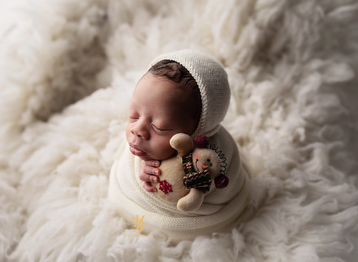 maryland newborn photographer (2)