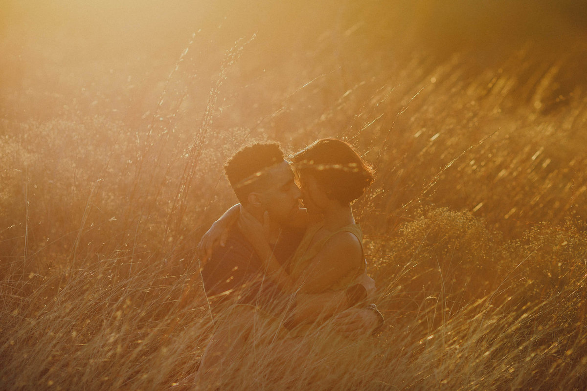 couple in golden sunset grass embracing