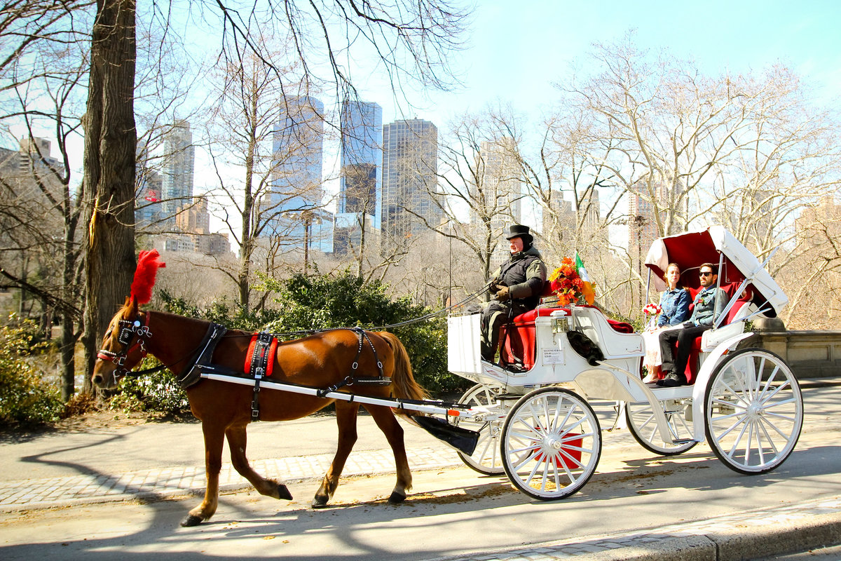 new-york-wedding-photos-IMG_9832