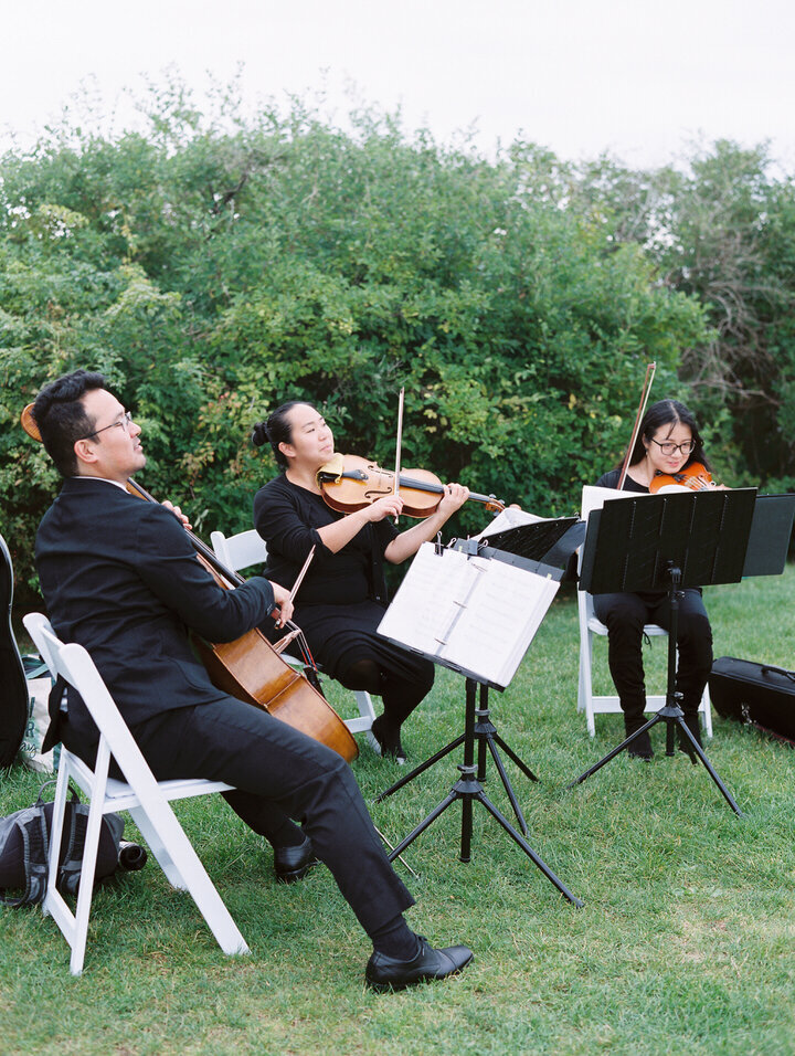 string trio, musician for wedding ceremony at newport castle hill inn