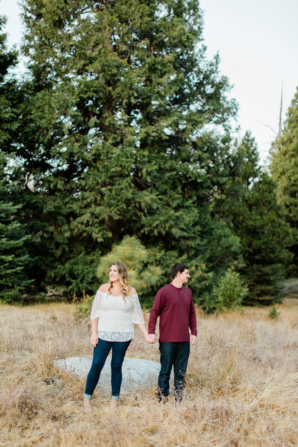 engaged couple holding hands in front of evergreen trees in shaver lake california