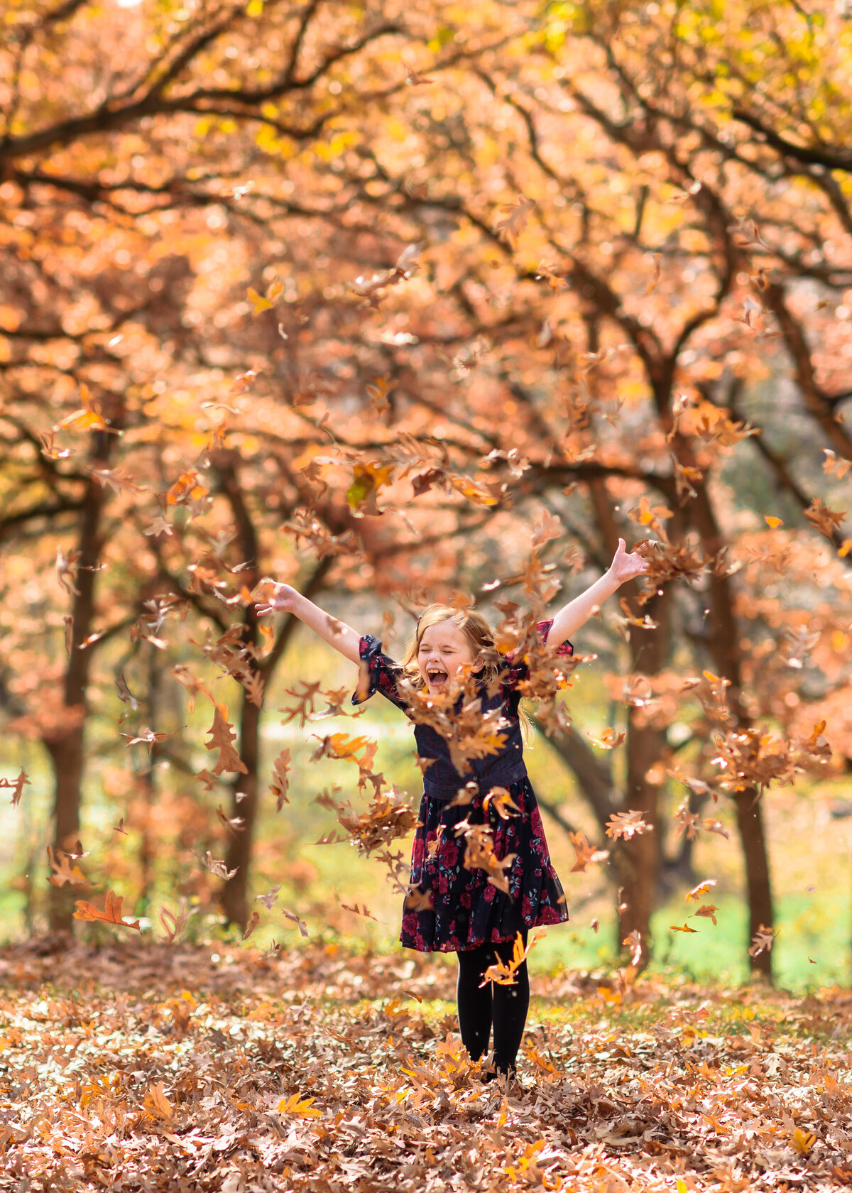 Des-Moines-Iowa-Family-Photographer-Theresa-Schumacher-Photography-Fall-Park-Girl