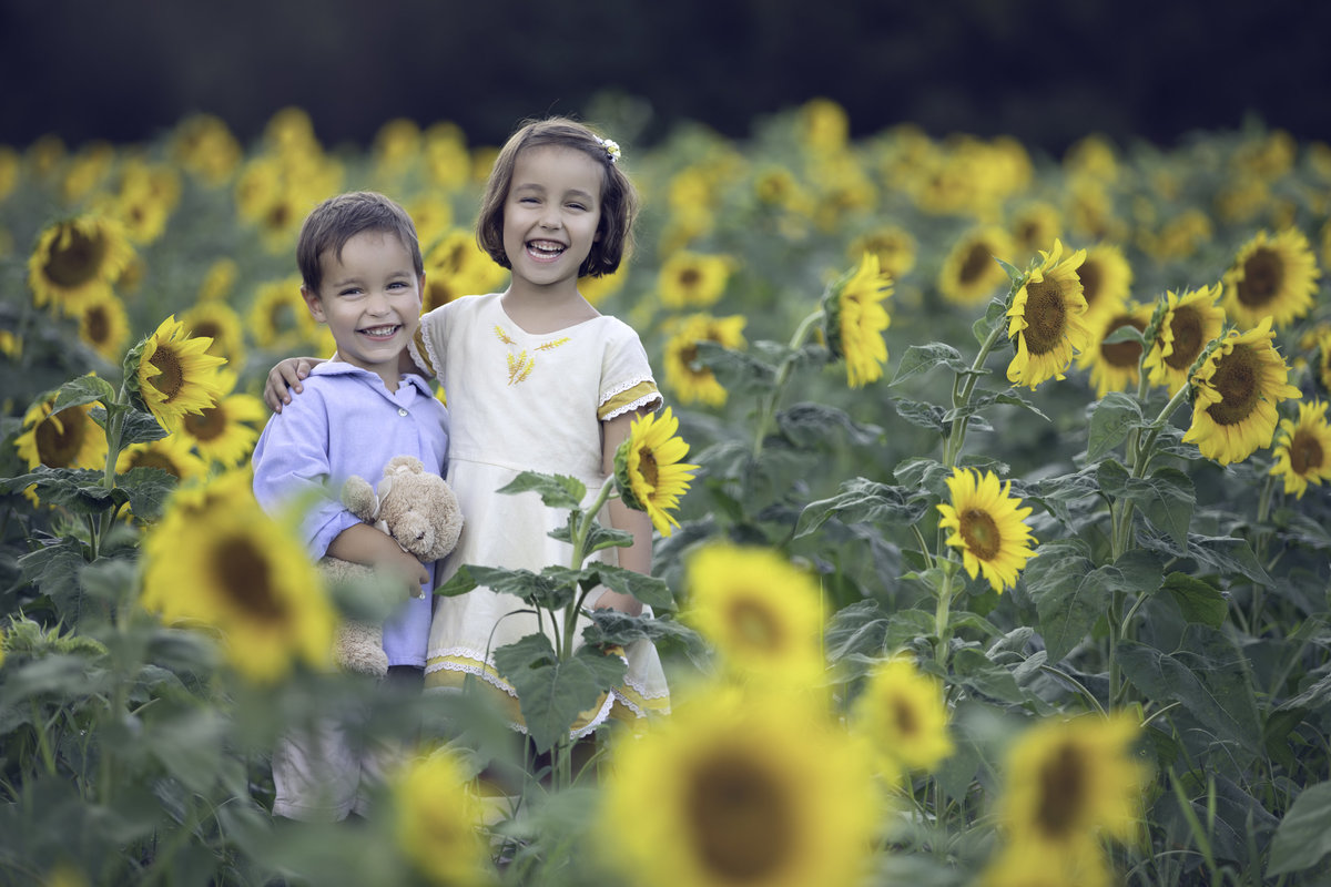 children in sunflower field