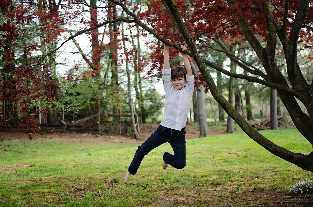 Portrait of a happy child swinging from a Japanese Maple during a lifestyle session taken by Sarah Alice Photography in Northern Virginia