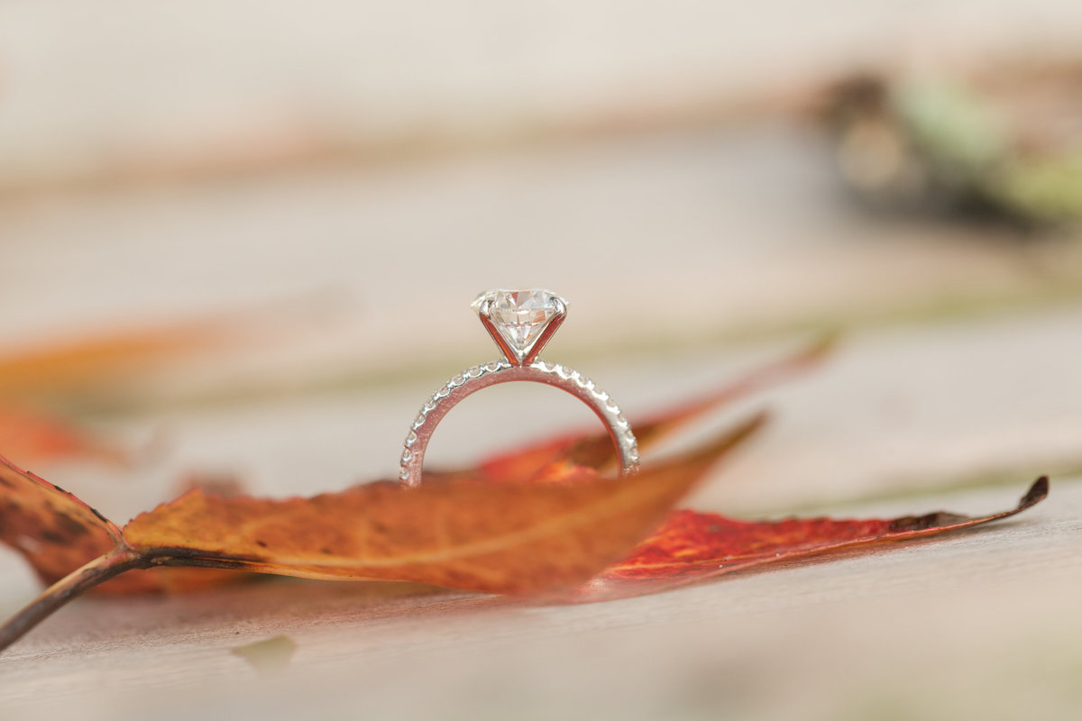gorgeous engagement ring with fall leaves