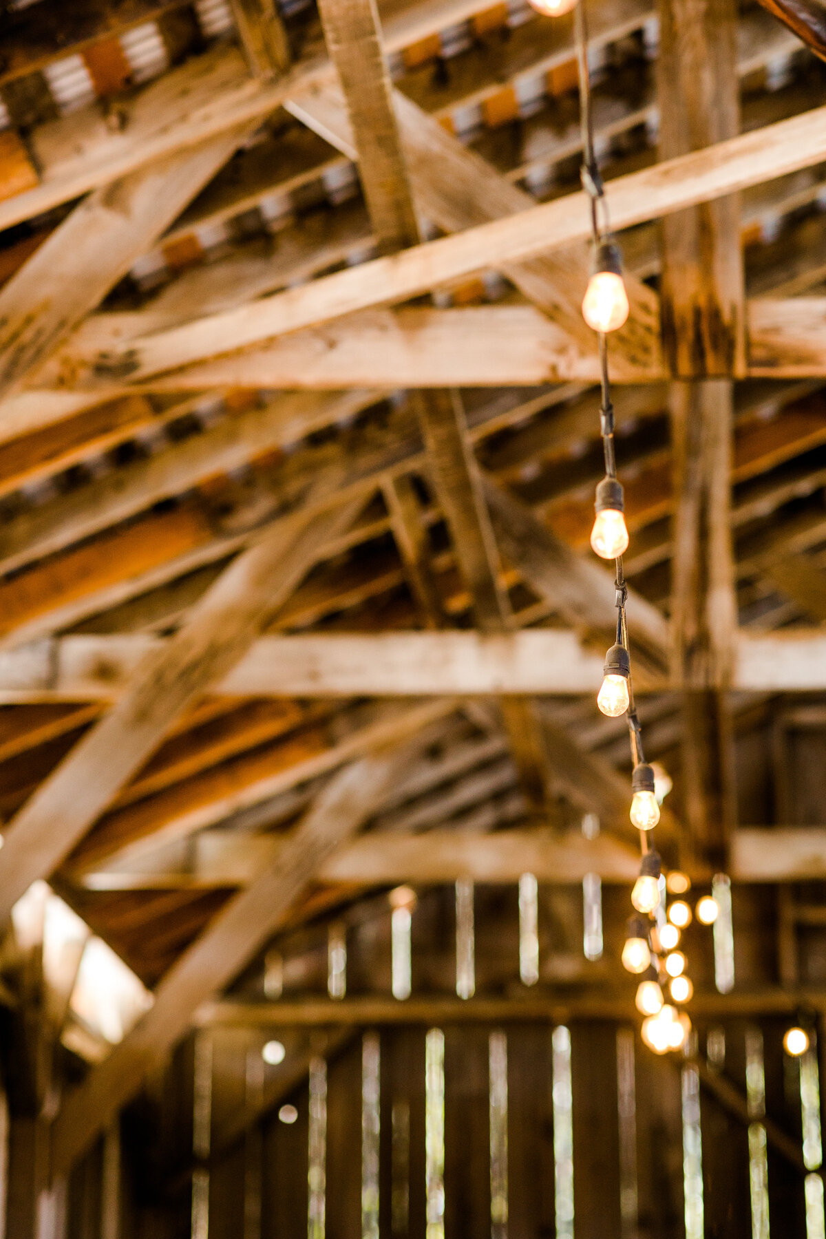 the-orchard-wedding-watsonville-58