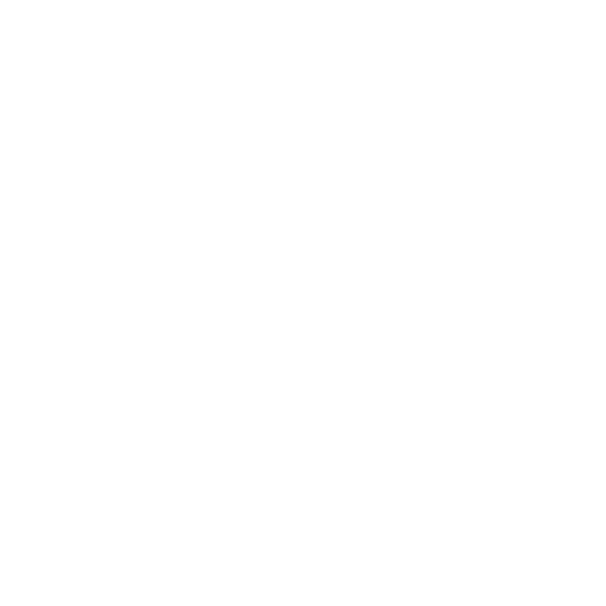femforce logo