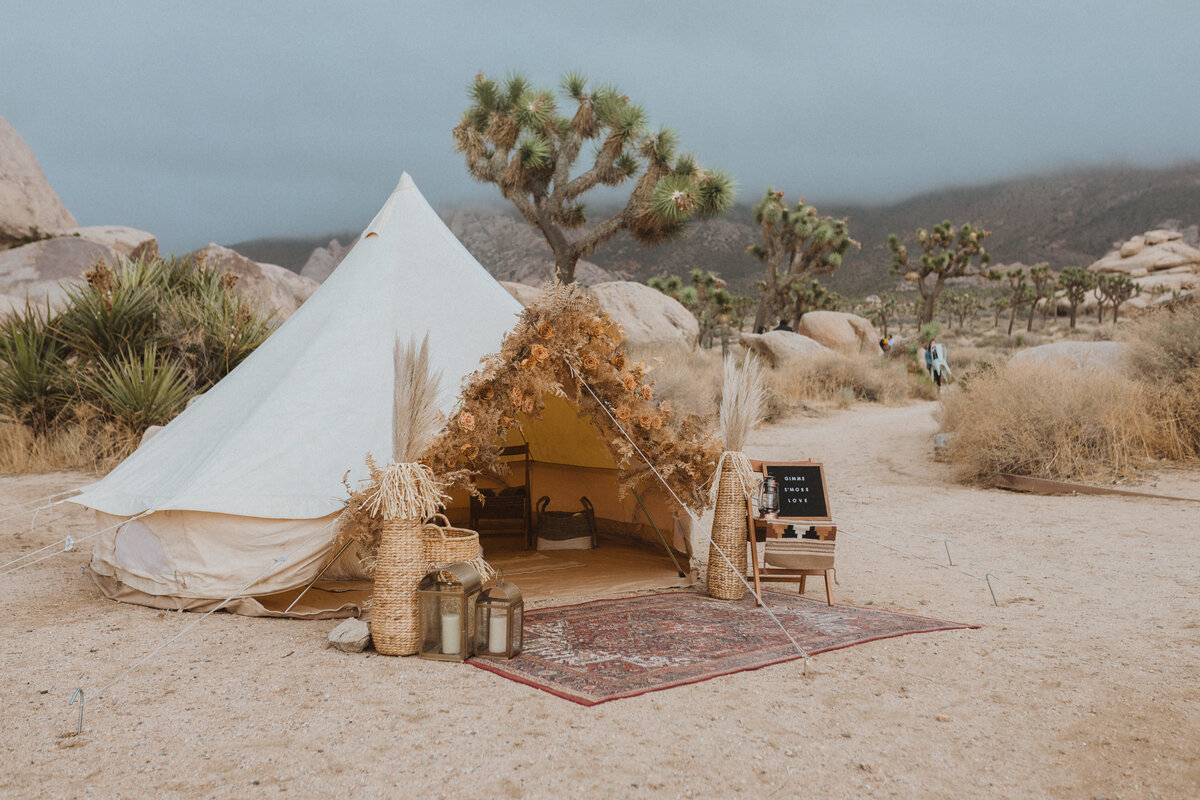 liv_hettinga_photography_joshua_tree_adventure_elopement-47