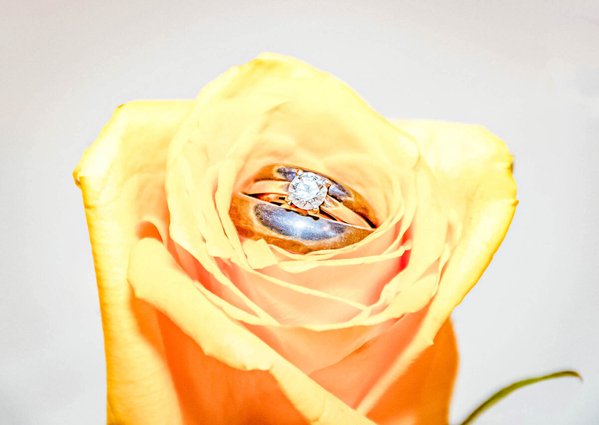 Bald Head Island NC Wedding Photography - Anna and Ray - Marriage Rings Rose - Wilmington Photographers Team