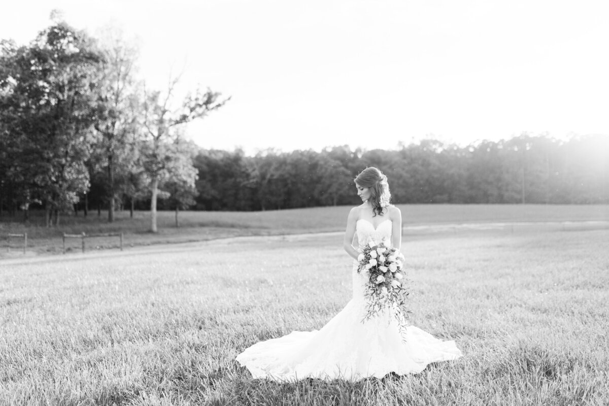 charlotte-wedding-photography-megan-pitts00008
