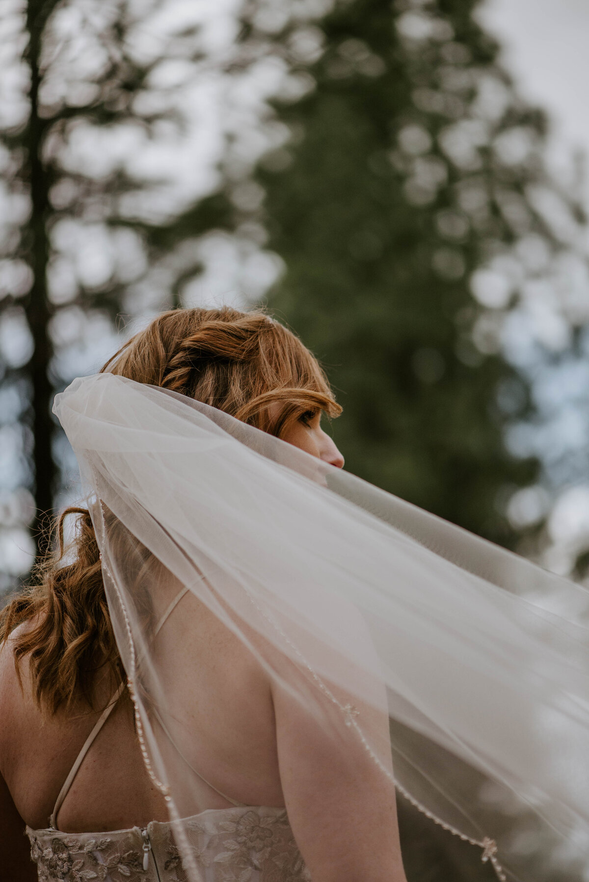 ochoco-forest-central-oregon-elopement-pnw-woods-wedding-covid-bend-photographer-inspiration3145