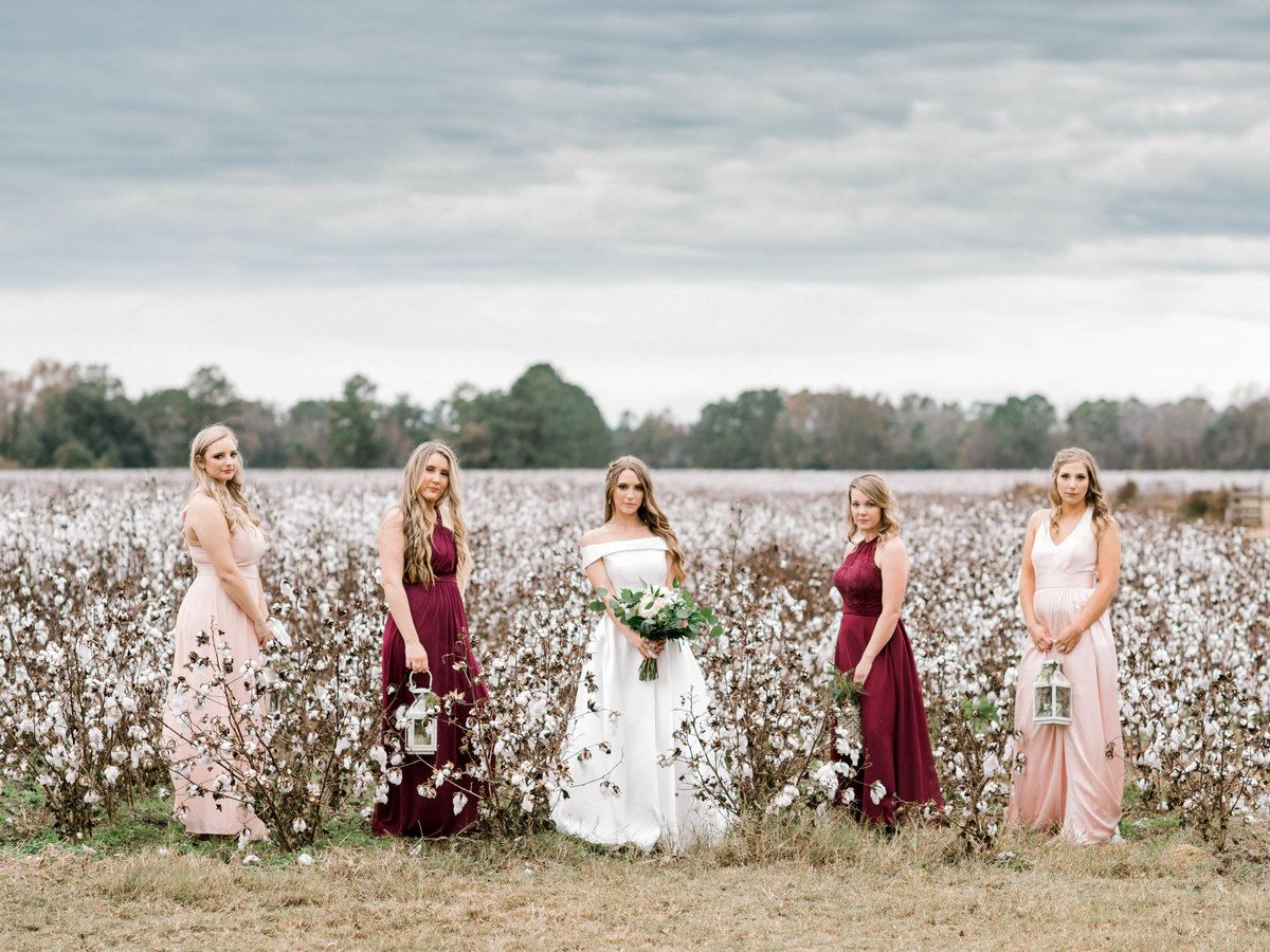 Bride and Bridesmaids in cotton field
