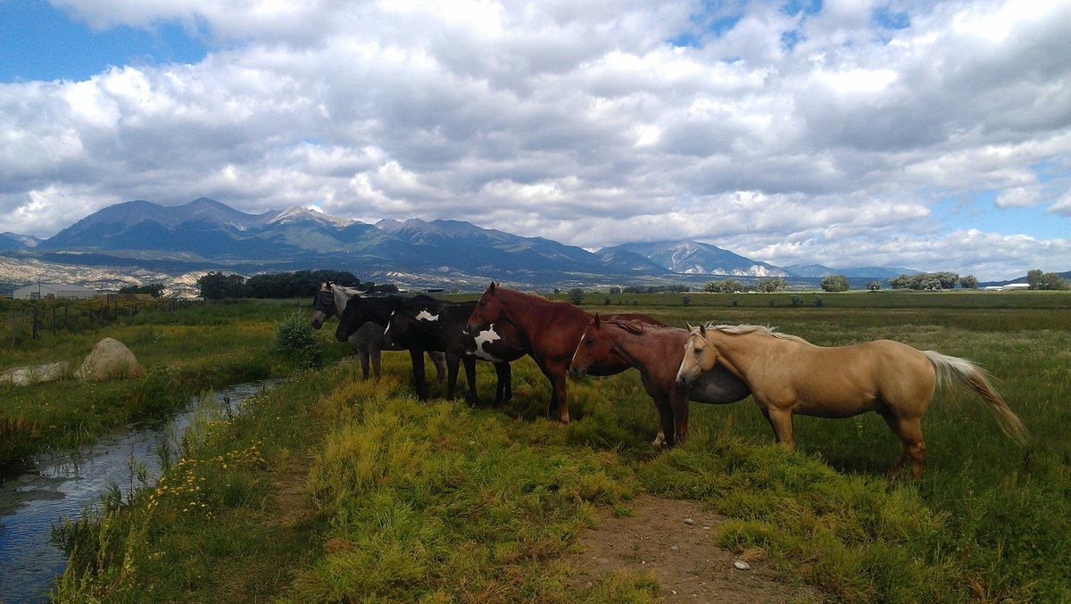 EverettRanch009SalidaColoradoWeddingsRusticOutdoorBarnHorsesArkansasRiverRockyMountains