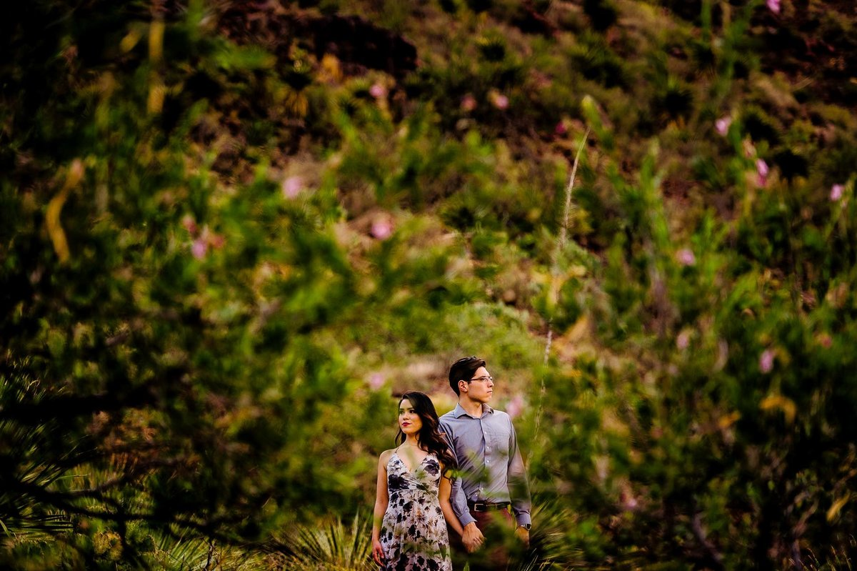Engagement session_250