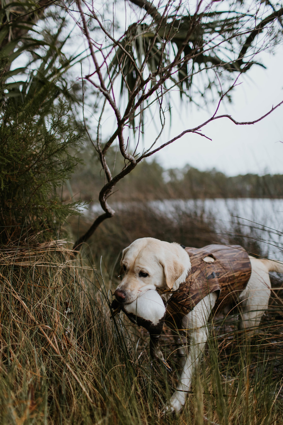 Charleston-sc-duck-hunting-lifestyle-photography-8