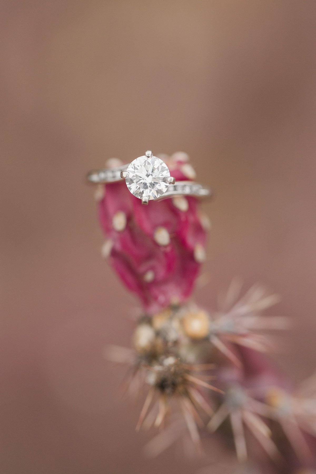 Tucson-Engagement-Photography_0034