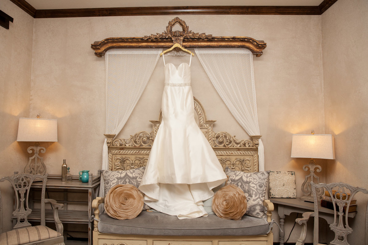 Ma Maison wedding photographer bride dress 2550 Bell Springs Rd, Dripping Springs, TX 78620
