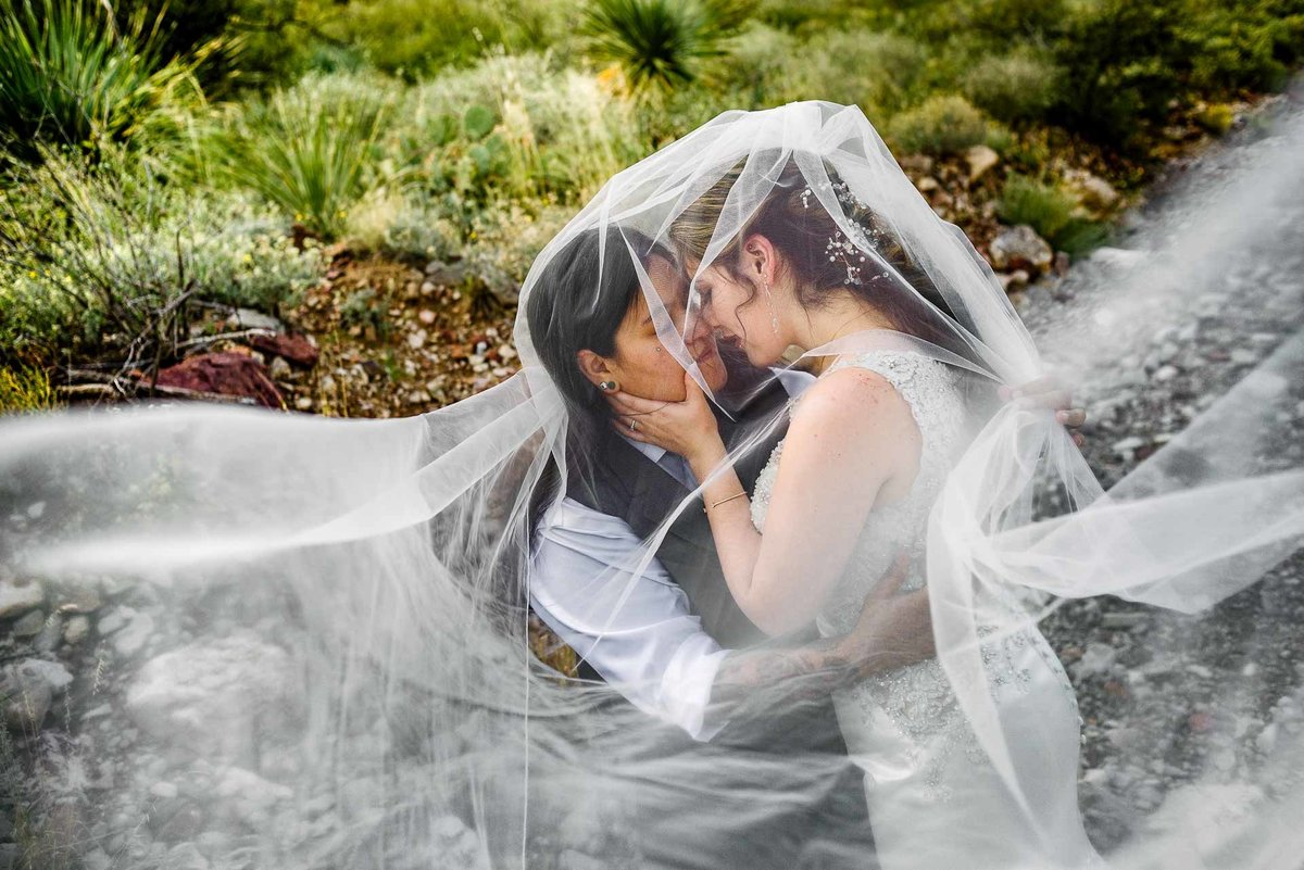 veil  photo  in el paso texas by stephane lemaire photography