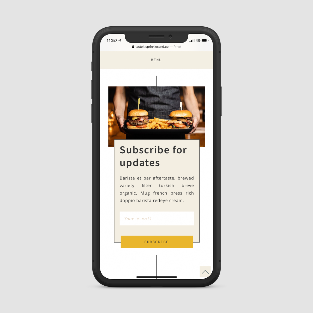 iPhone X mockup subscribe