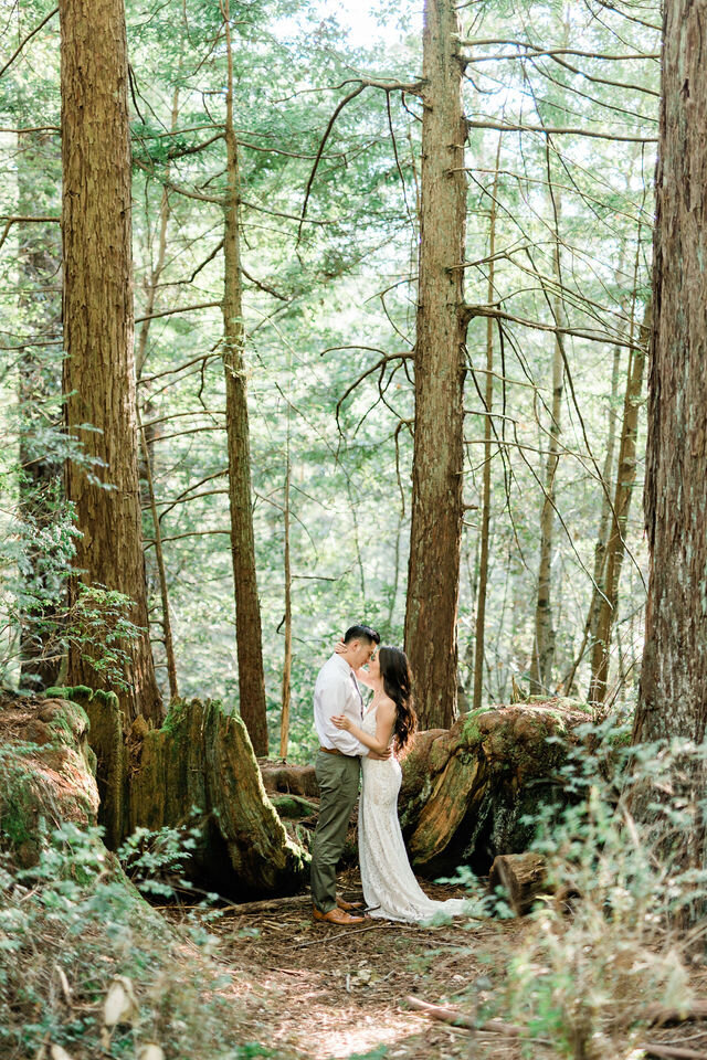 purisma-creek-redwoods-preserve-woodside-engagement-1