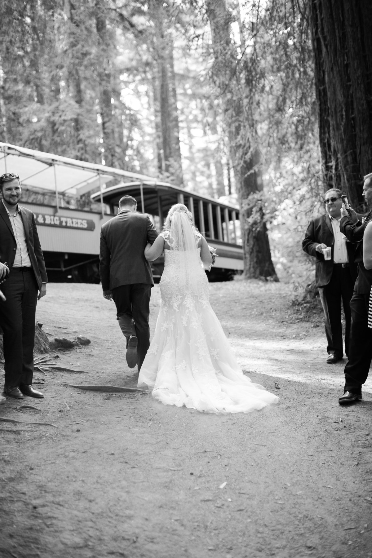Roaring Camp Railroad Santa Cruz Wedding33