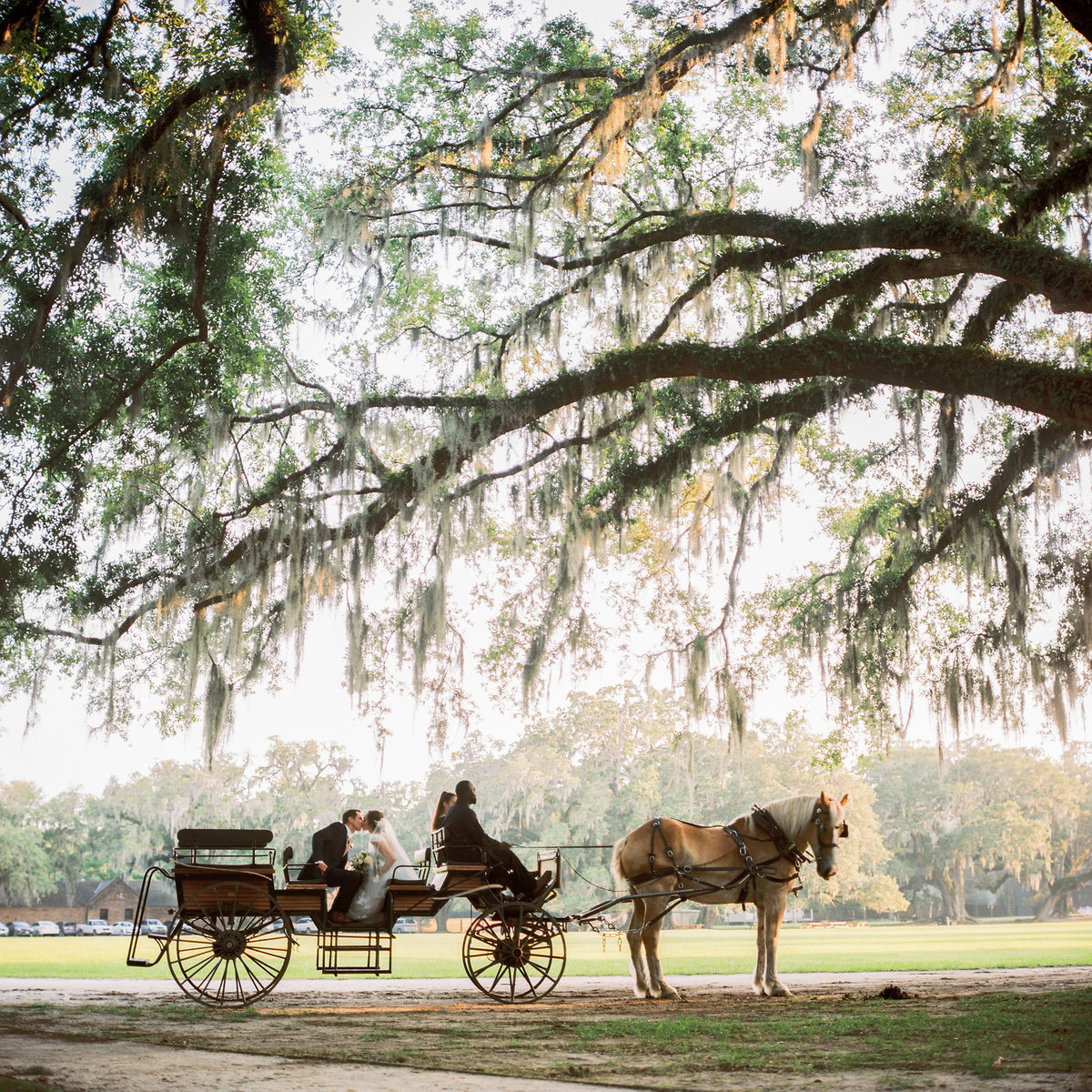 charleston-wedding-venues-middleton-place-philip-casey-photography-092