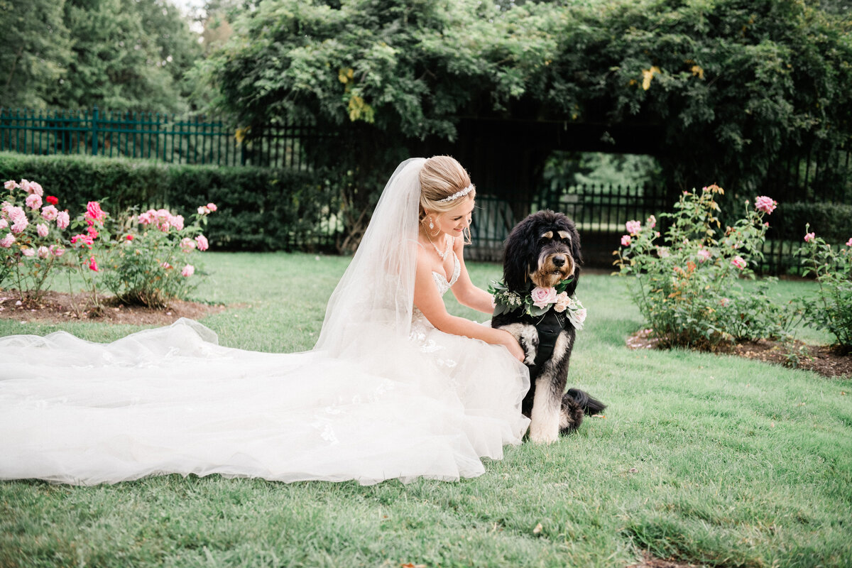 Bride with her dog at her wedding planned by columbus wedding planner Sirpilla Soirees