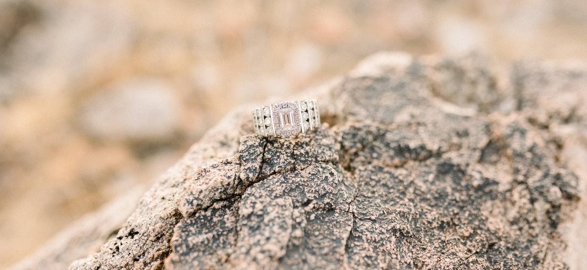 caitlin_audrey_photo_White_Tank_Mountains_Engagement (34 of 56)