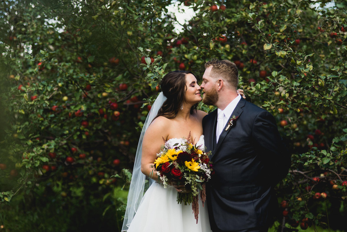 Minnesota Apple Orchard Wedding Photographer 233