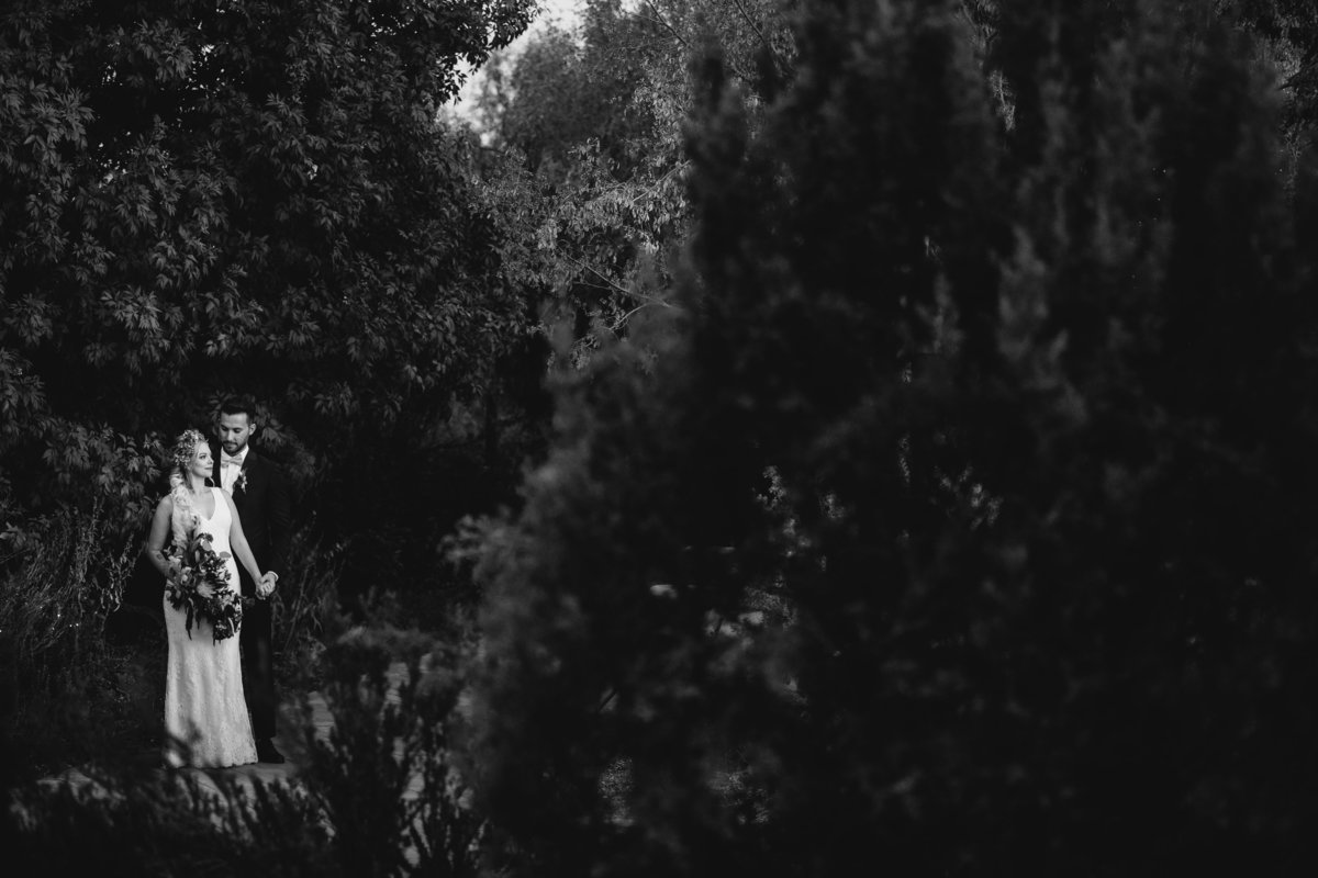 Lake Tahoe wedding pictures couple poses amongst greenery