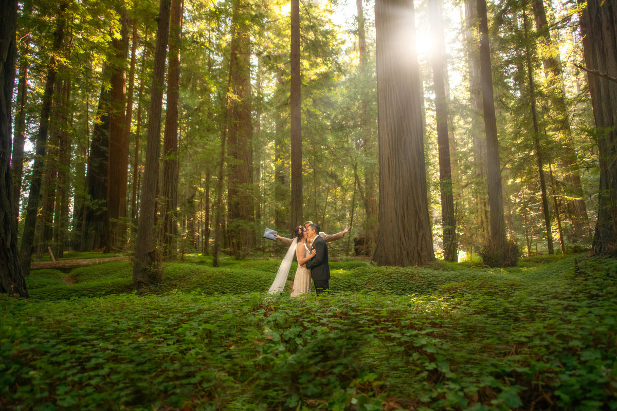 Redway-California-elopement-photographer-Parky's-Pics-Photography-redwoods-elopement-Avenue-of-the-Giants-Pepperwood-California-02.jpg