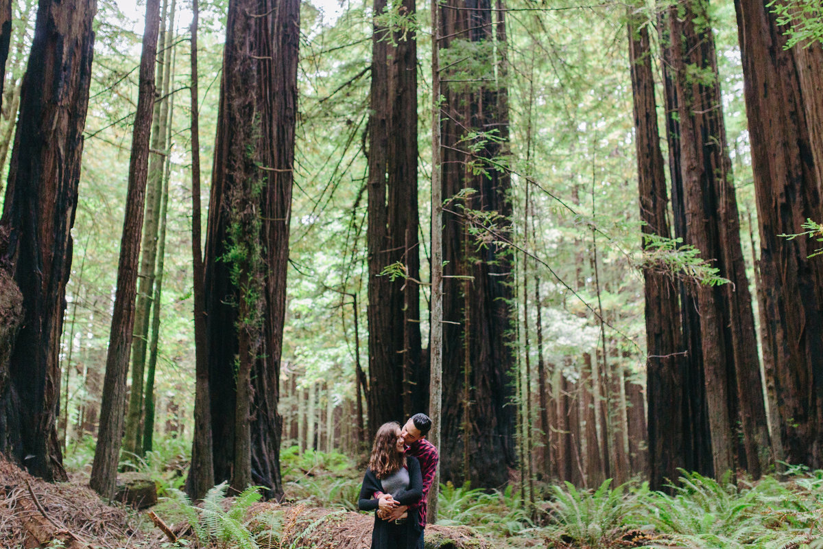 Redwood National Park Avenue of the Giants Engagement Session -7669