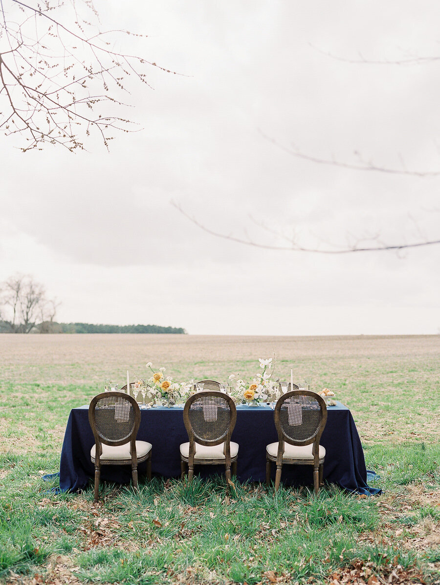 Graceful_Countryside_Fine_Art_Bridal_Maryland_Wedding_Megan_Harris_Photography-108