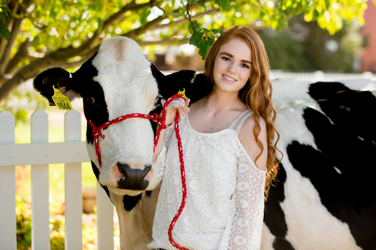 colorado-senior-pictures-with-cow