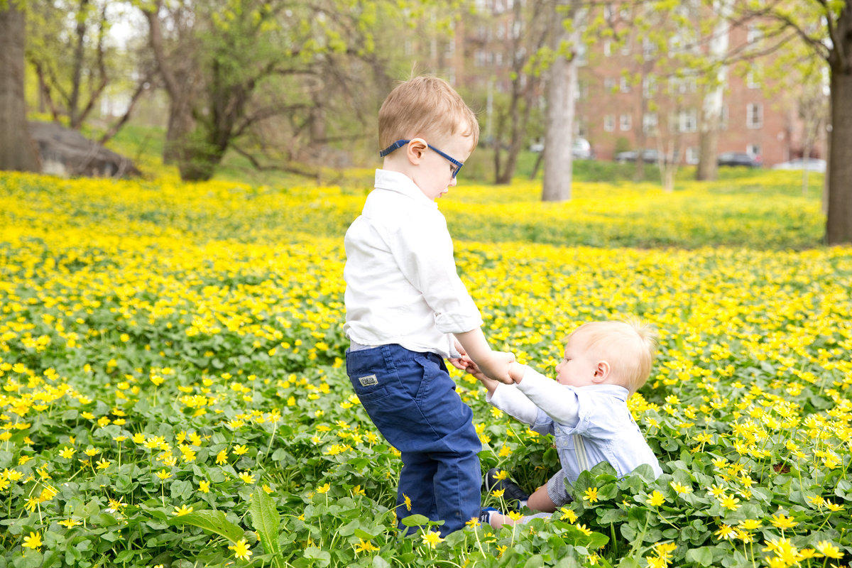 Little boy helps baby brother up in field of flowers in Riverdale Bronx