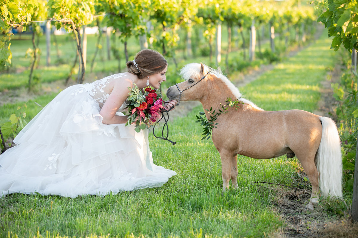 Beautiful bride holding bouquet with miniature pony in the vineyards at Providence Vineyard wedding venue