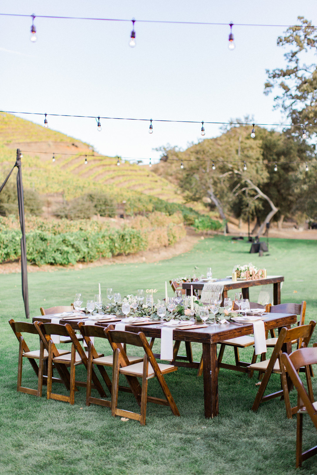 Triunfo Creek Vineyard Wedding-6970
