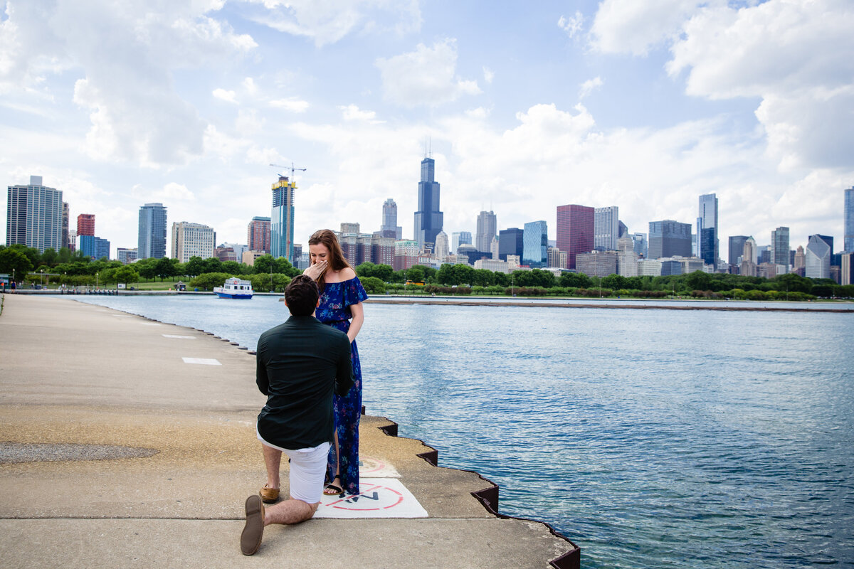 Chicago Wedding proposal