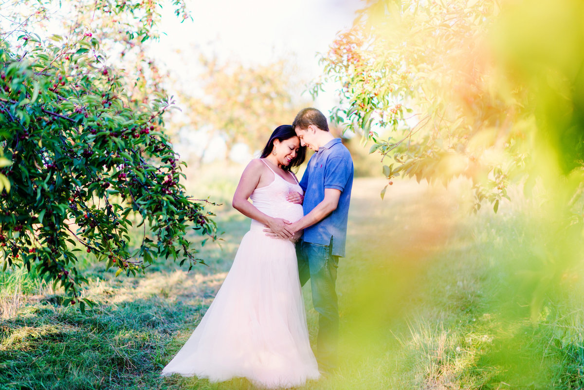 maternity portrait photographers traverse city michigan